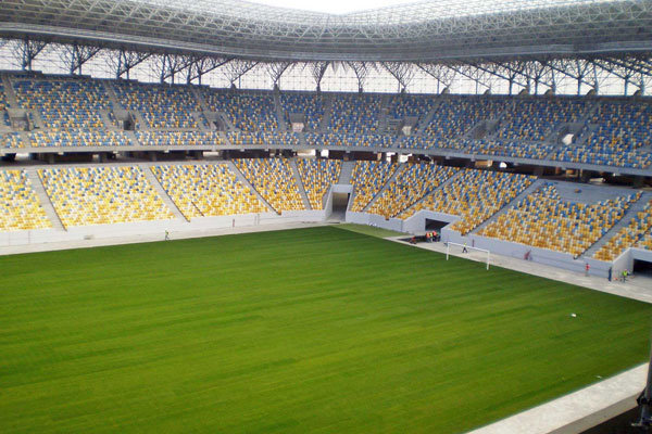 stadion-rasen8